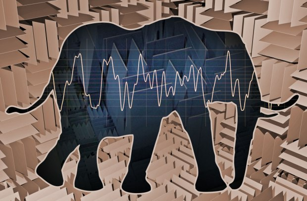 The elephant in the Anechoic chamber